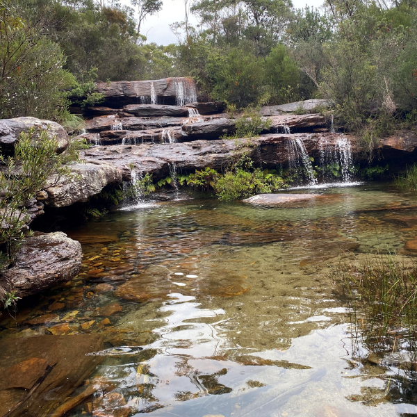 Black Diamond Adventures can take you over the escarpment or take you paddling through Kangaroo Valley to explore its magnificent waterfalls