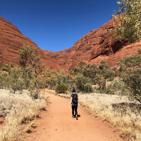 Experience the red dirt of the Australian Outback come to life when we walk the Larapinta Trail